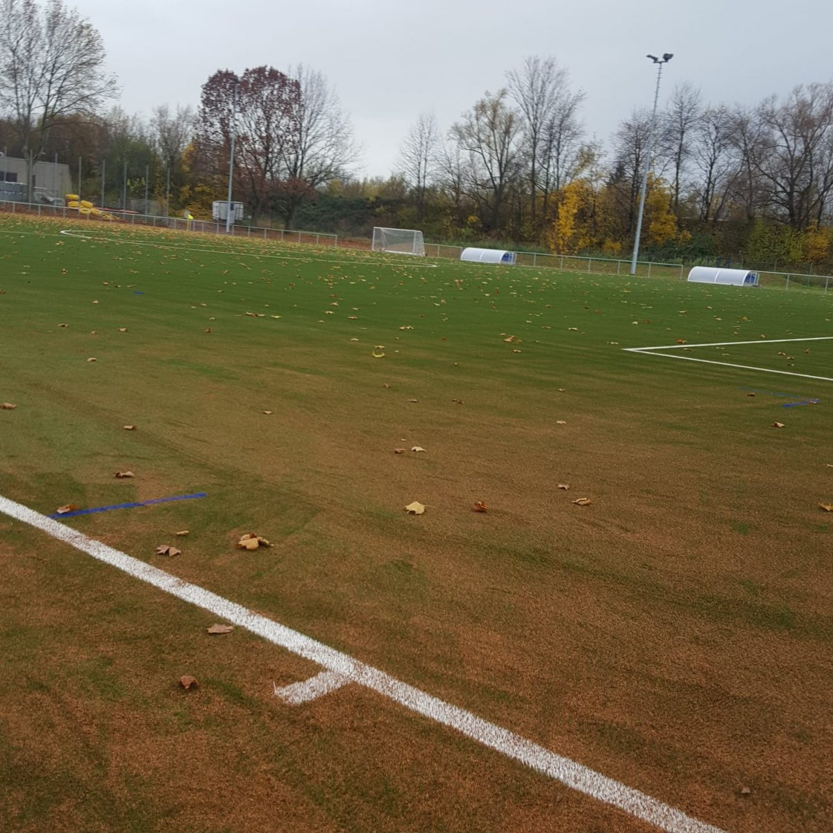 Bilder-Sportplatz8